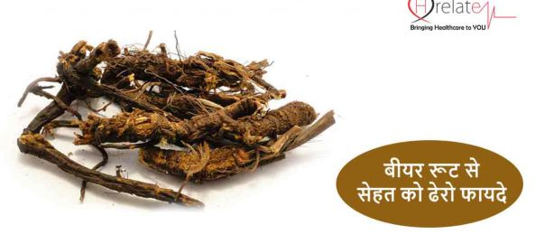 Osha Root Benefits in Hindi