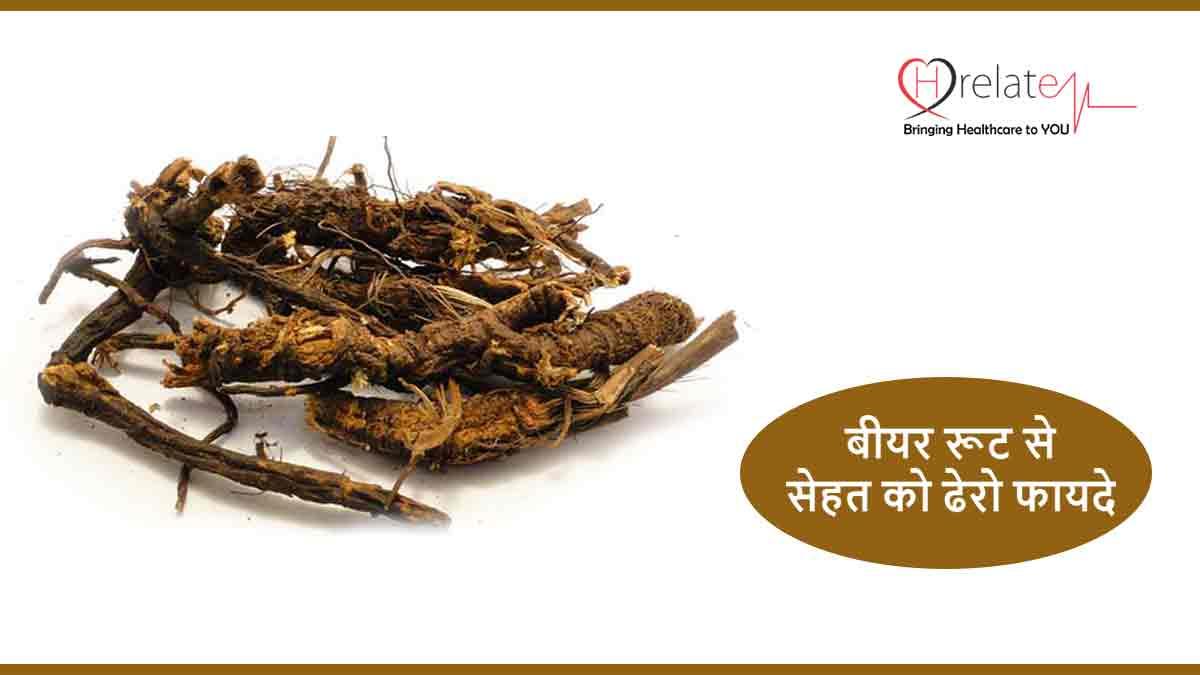 Osha Root Benefits in Hindi