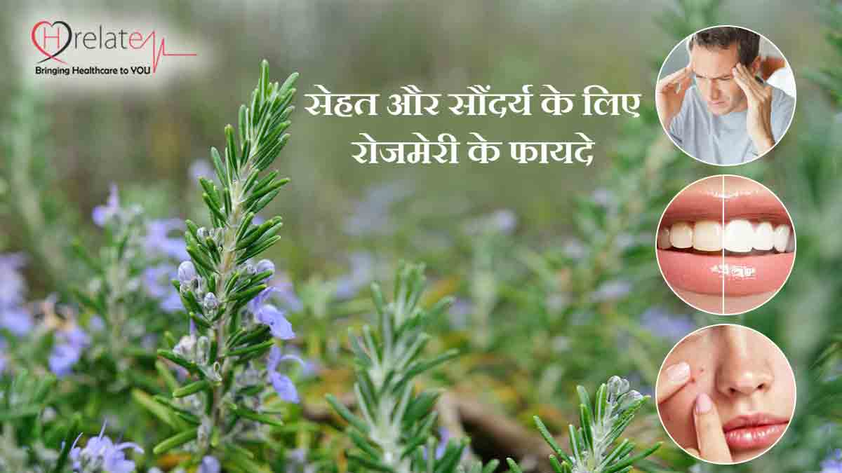 Rosemary Benefits in Hindi