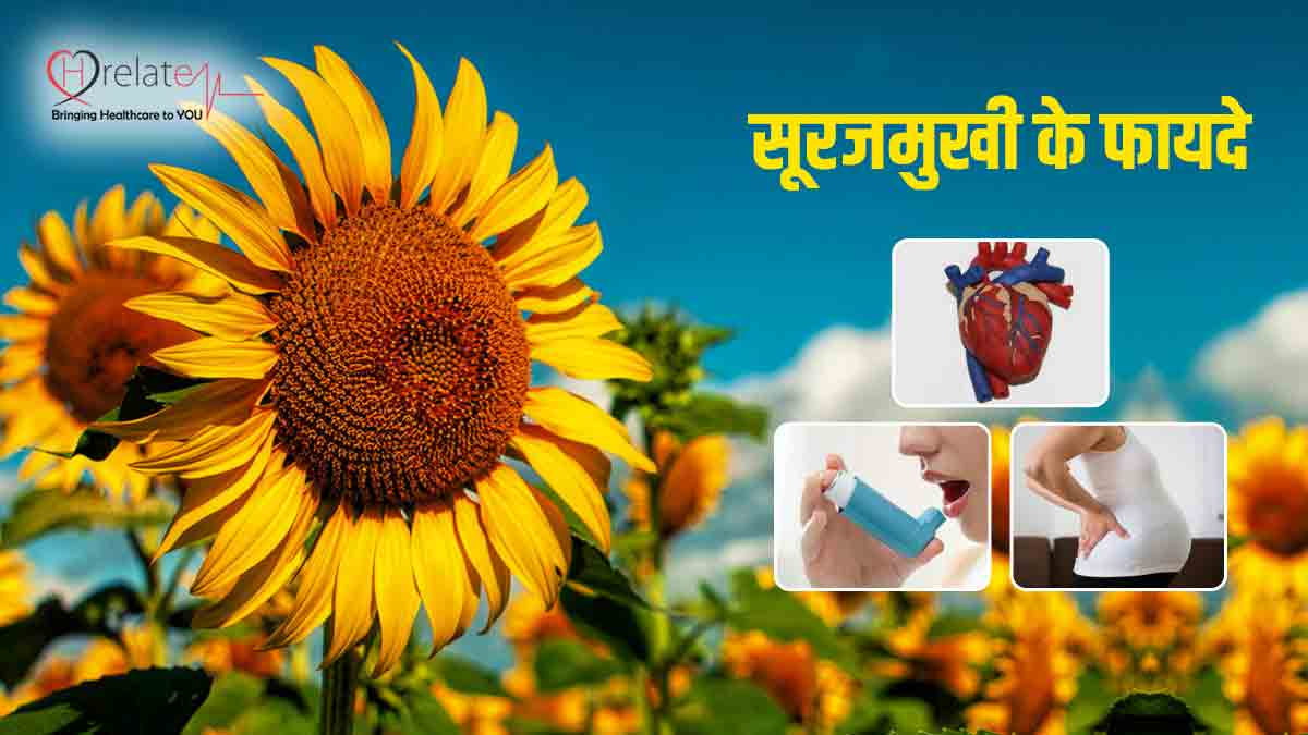 Sunflower Benefits